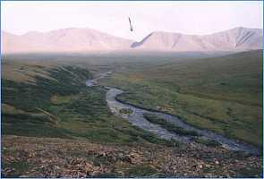 Верховья р.Грубею у перевала.