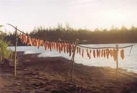 Янтарная рыбка